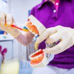 Aufklärung Zähneputzen anhand eines künstlichen Gebisses
